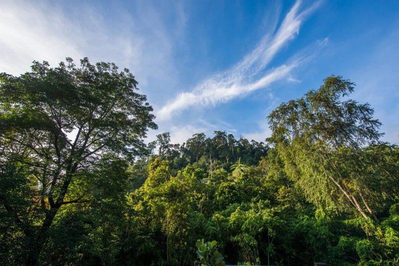 Villa Selesa Dan Mewah Pada Harga Bajet Di Janda Baik 5