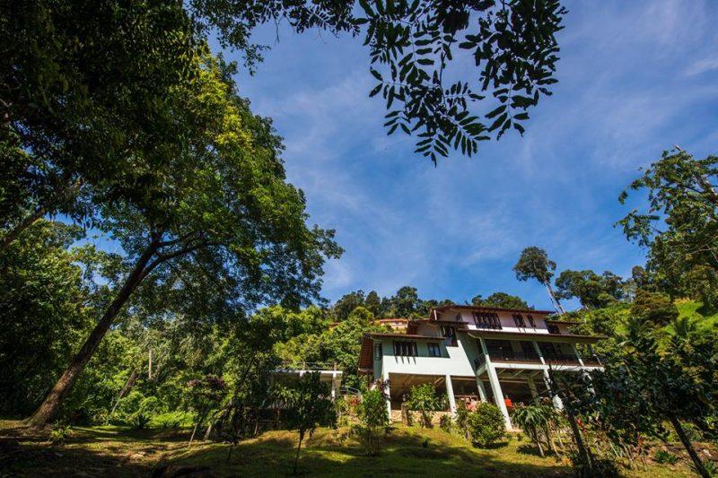 Villa Selesa Dan Mewah Pada Harga Bajet Di Janda Baik 2