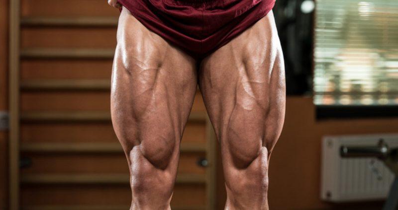 6 Step Dapatkan Bentuk Otot Kaki Kental & Sempurna