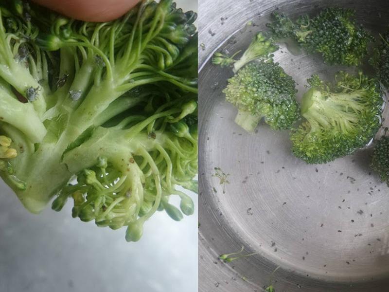 Sayur Brokoli Sebenarnya Banyak Ulat, Rendam Cara Ini Untuk Hapuskannya