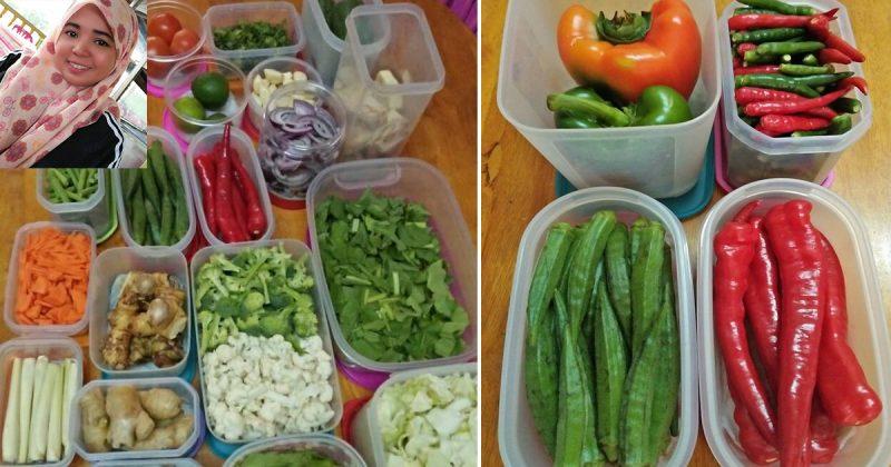 Bekas Peniaga Makanan Turunkan 5 Tip Simpan Sayur Dalam Peti Sejuk Supaya Tahan Lama. Mak-mak Sila Praktik!