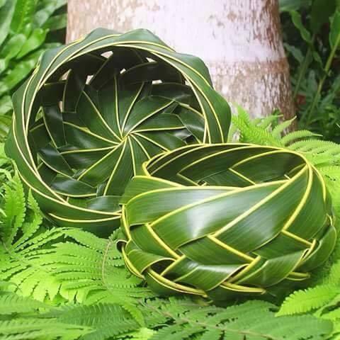 Image result for daun kelapa