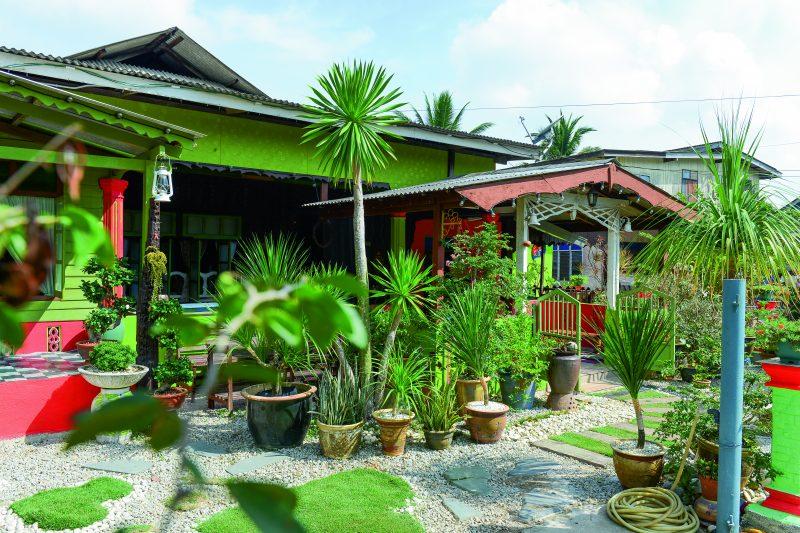 GAMBAR Laman Kampung Banyak Guna Pasu Nampak Lebih Kemas