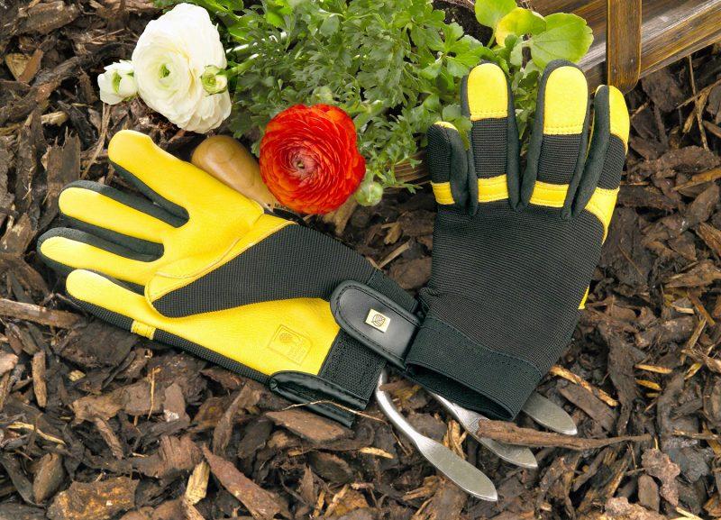 9 Kegunaan Bedak Di Kebun Yang Ramai Tak Tahu 2